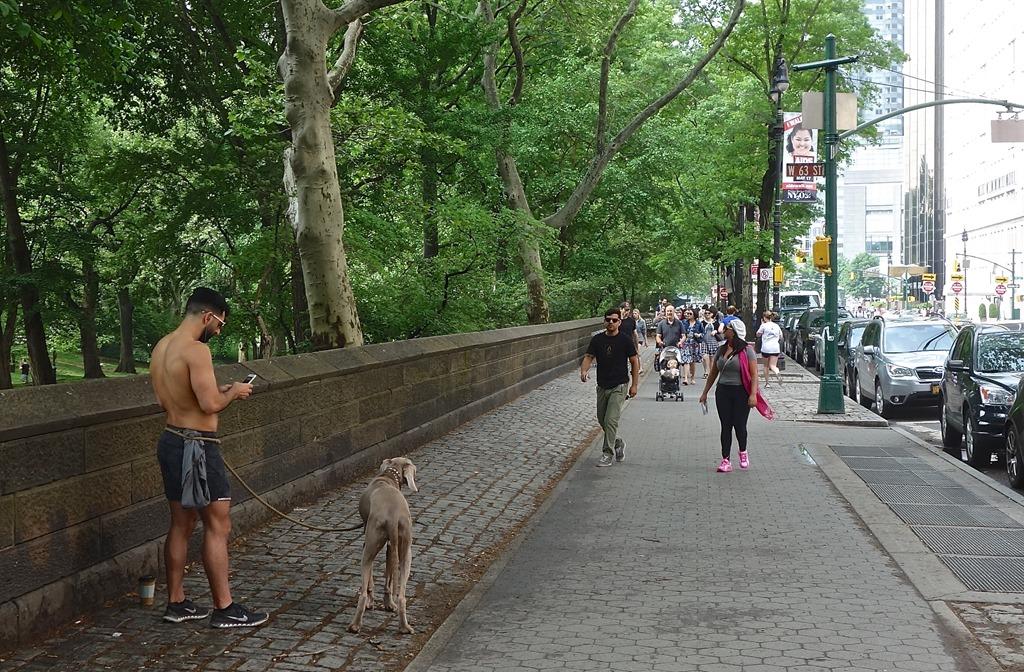 Девочки мастурбируют в парке фото фото 806-205
